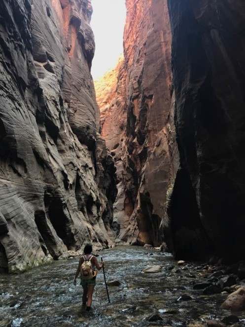 Zion_The Narrow